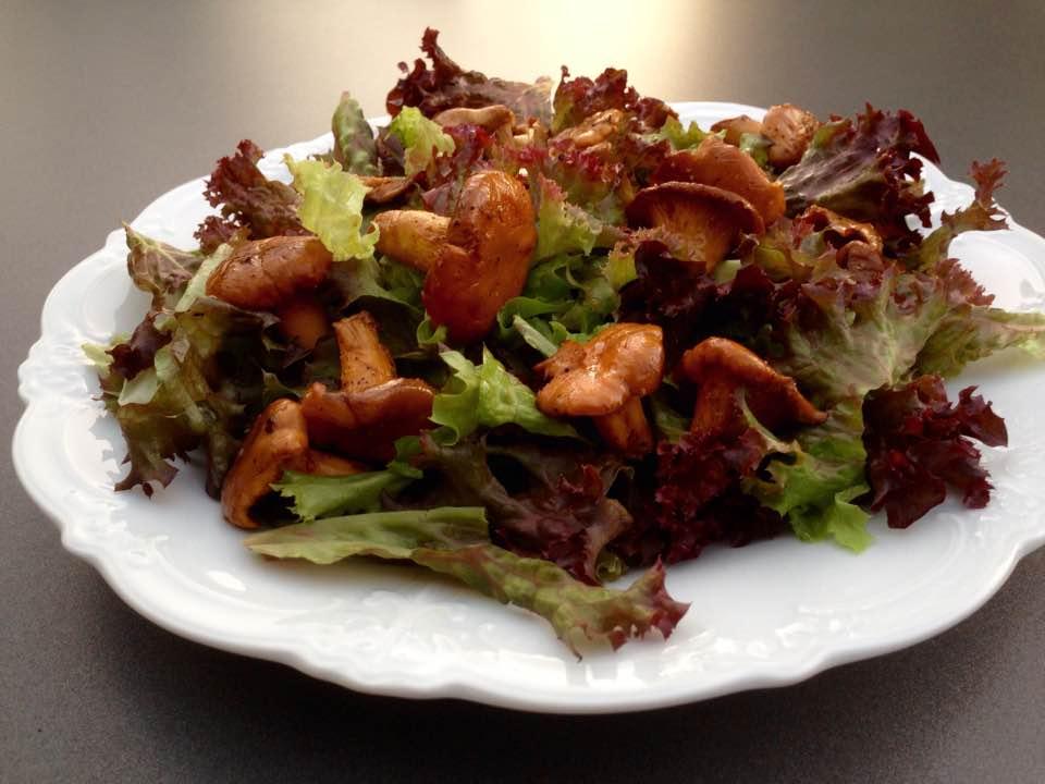 herbstlicht_salat_pfifferlinge